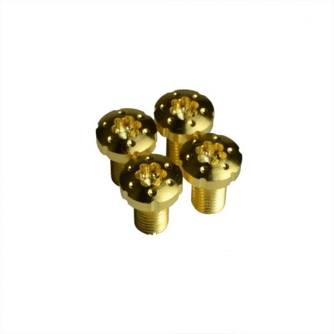 1911 Torx Grip Screws with TRUE 24K GOLD COATING